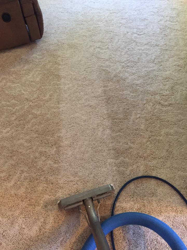 carpet cleaning bismarck nd